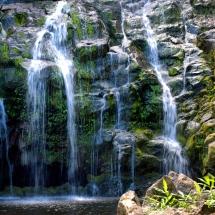 Kohala Waterfalls - Landscape